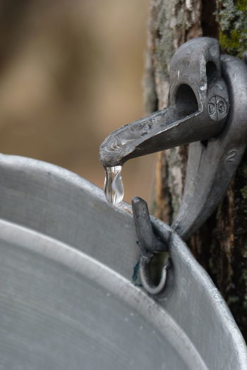 Metal Outdoors Industry No People Cabane à Sucre Eau D'érable Maple Tree Maple Syrup Canada Québec Canada Close-up Day Rusty