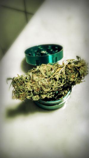 Weed XD