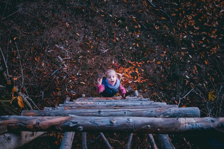 Girl Climbing Ladder On Field