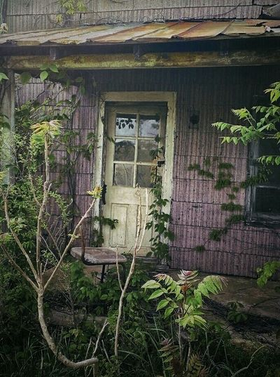 In The Garden Of Good And Evil... Weathered Abandoned Places Abandoned Buildings Abandoned & Derelict Abandoned Rural Scenes Rural Life AMPt - Abandon Nature Taking Over Again Creepy Places Creepy