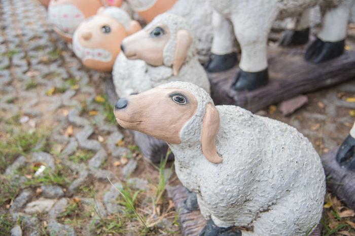 Farm Animal Animal Themes Baby Sheep Cute Ground Mammal Outdoor Park Sculpture Sculpture Garden Sculpture In The City Sheep Sheep Farm Sheep Statue White Sheep