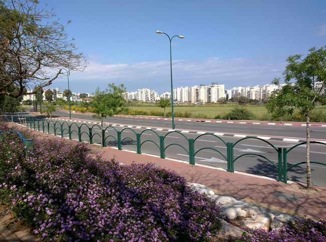Spring 2015. City. Весна 2015. Город. Nexus 6 весна город Spring City Ashkelon Mobile Photography