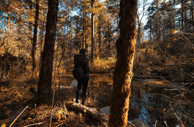 in the forest with my darling @helucha Tree Nature Outdoors Silhouette Forest Day People Landscape Lake Path Wild Water Today's Hot Look Beauty Portrait Growth Light And Shadow Scenics Eyeemphoto Beauty In Nature People And Places EyeEm Masterclass