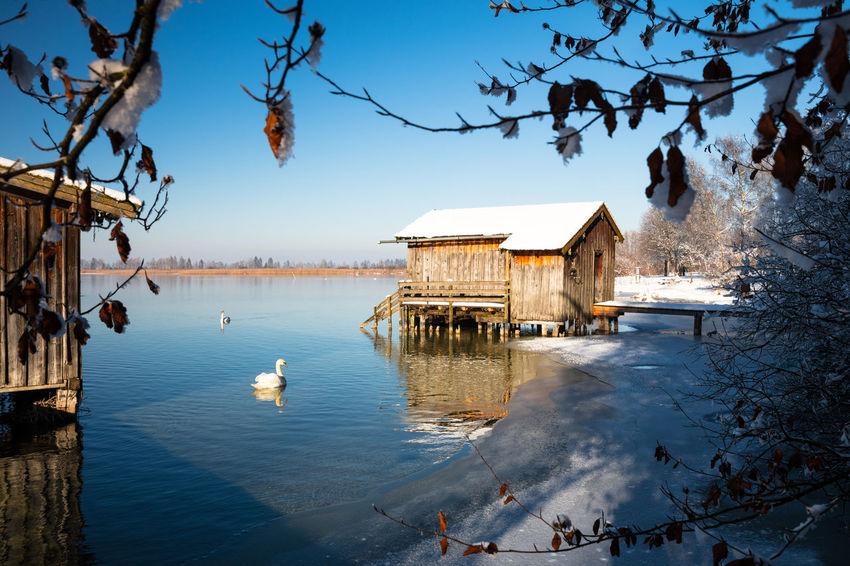 Boathouses at lake Kochel, Bavaria, Germany, Bayern Boathouse Boathouses Deutschland Germany Kochel Am See Kochelsee Lake Lake Views Snow Sun Swan Trees Winter Wintertime First Eyeem Photo