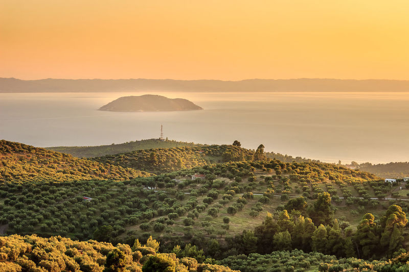 Hazy, golden hour view of olive plantation above the sea and distant turtle island in Greece Seaside Orange Color Golden Hour Sunset Sky Travel Destination Landscape Seascape Vibrant Color Olive Tree Fields Sunlit Sunbathing Light And Shadow Island Turtle Horizon Over Water Agriculture Plantation Valleys Viewpoint Perspective Painting Scenery Summer Season