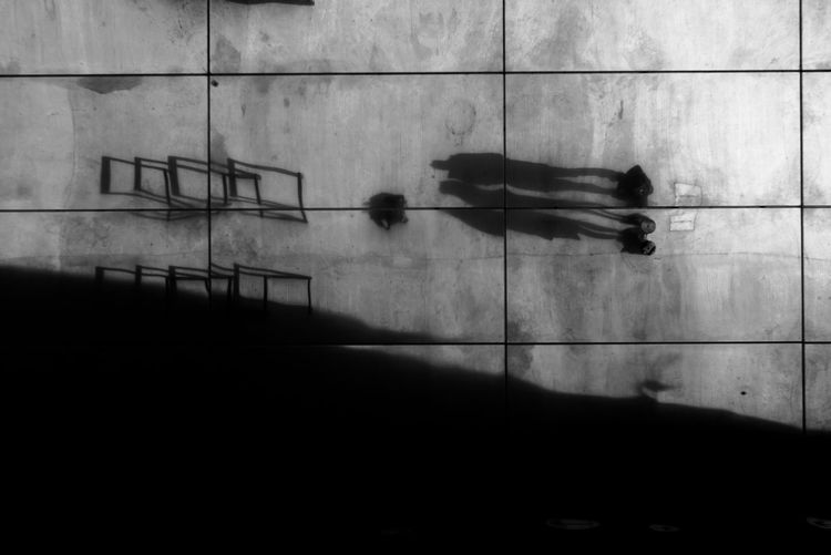 Ceiling Shadows