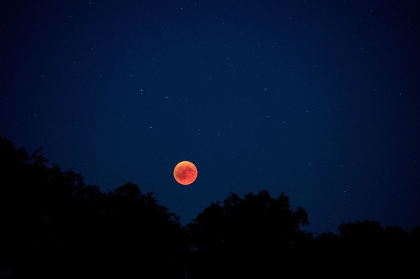 Red moon appears behind the trees Lunar Eclipse Astronomy Dark Eclipse Eclipse 2018 Full Moon Moon Natural Phenomenon Night Orange Color Outdoors Planetary Moon Shape Silhouette Space Stars