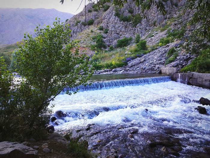 dersim Water Tree Close-up Sky Rocky Mountains Calm