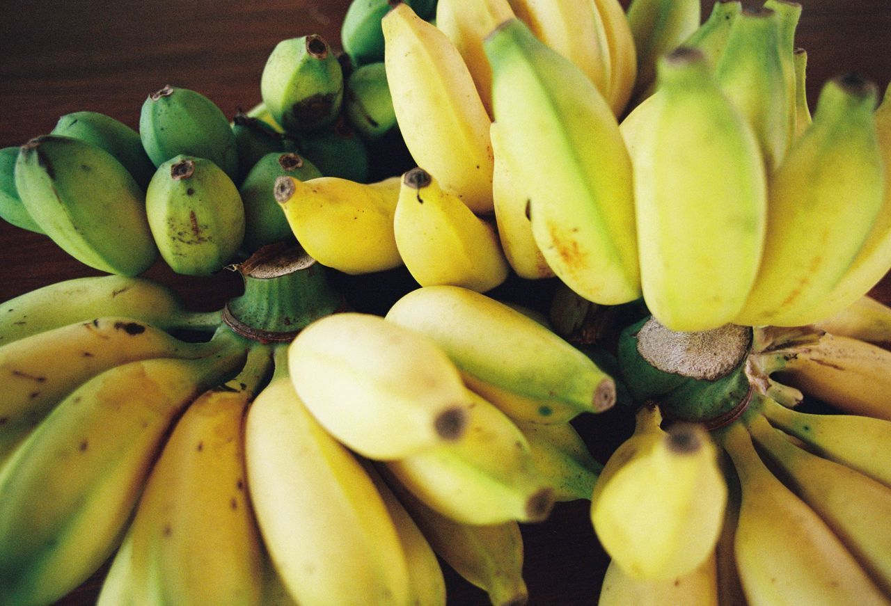 fruit, banana, food and drink, yellow, food, freshness, healthy eating, no people, growth, close-up, bunch, unripe, flower, day, banana tree, nature, indoors, fragility, flower head, beauty in nature