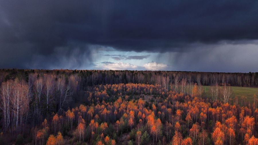 Smow storm approaching DJI X Eyeem Sky Cloud - Sky Nature Dramatic Sky Beauty In Nature Scenics Landscape Tranquility Storm Cloud Outdoors Tranquil Scene Tree Field Plant Power In Nature Growth Day Heavy Clouds Fall Beauty Snowstorm Blue And Orange Weather Photography Dramatic Sky Fall Colors The Week On EyeEm Perspectives On Nature Perspectives On Nature Autumn Mood