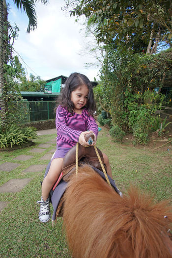 Horse Back Riding Pony Zoo Animal Child Childhood Domestic Animals Horse Innocence Leisure Activity Mammal Outdoors