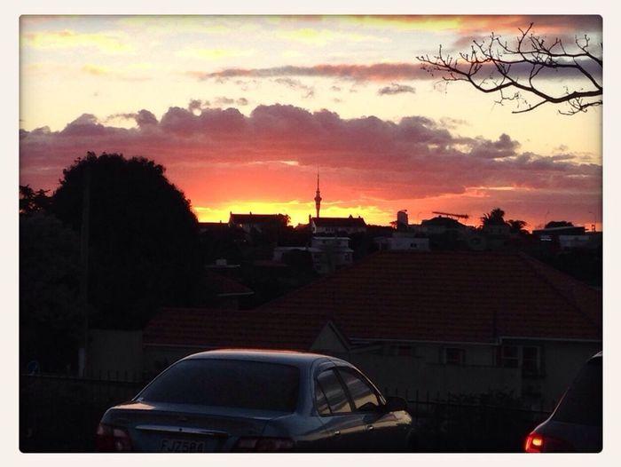 Sunset Supermarket Scenes