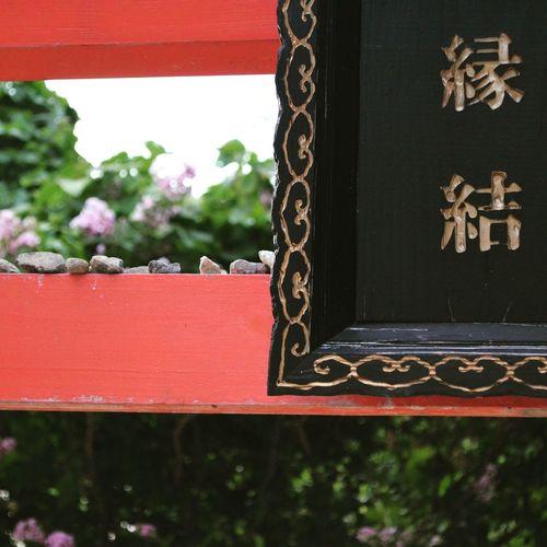 Japan TORII Summer