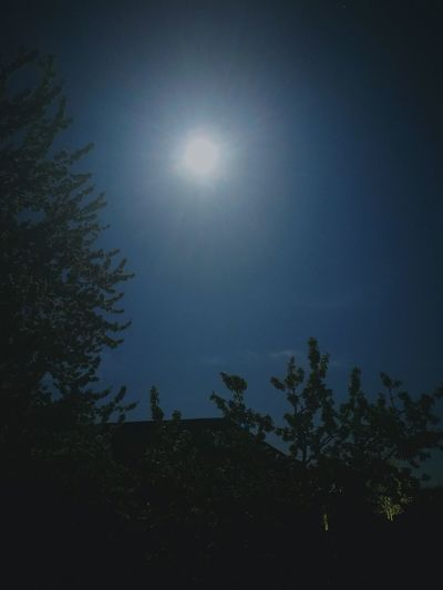 Night Moon Silhouette Sky Nature Outdoors Moonlight No People Beauty In Nature
