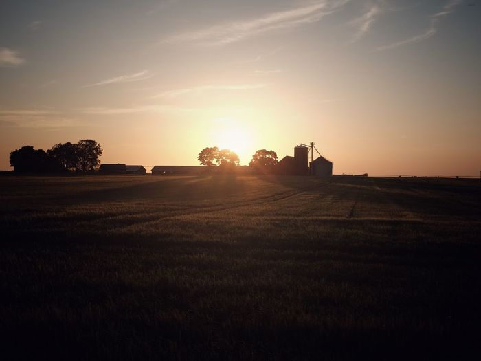 Farm at sunset Sweden No People Farming Agriculture Sky Sunset Sunlight Tree Plant Environment Field Tranquil Scene Landscape No People Land Silhouette Lens Flare