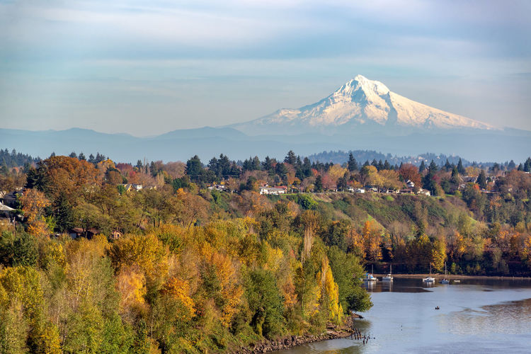 Mt. Hood rising above Portland, Oregon on a beautiful fall day Portland Oregon Pacific Northwest  Travel Travel Destinations Tourism Sky No People Day Outdoors Mount Hood Mt Hood Mountain Volcano Cascade Mountains Willamette River  Beauty In Nature Scenics - Nature Tree Water Plant Autumn Tranquil Scene Tranquility Change Nature Cloud - Sky Non-urban Scene Lake Environment Snowcapped Mountain Autumn Collection Mountain Peak