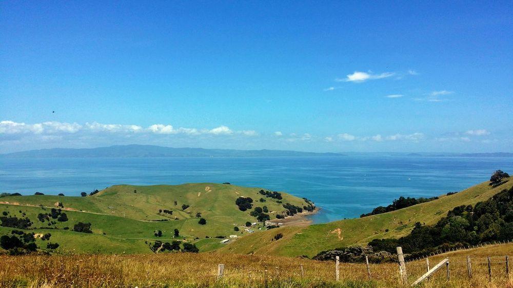 Nature On Your Doorstep New Zealand