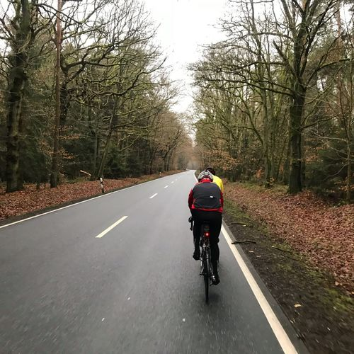Roadbike Cycling Woods Transportation Road Tree Bicycle Plant Real People Rear View Ride Riding