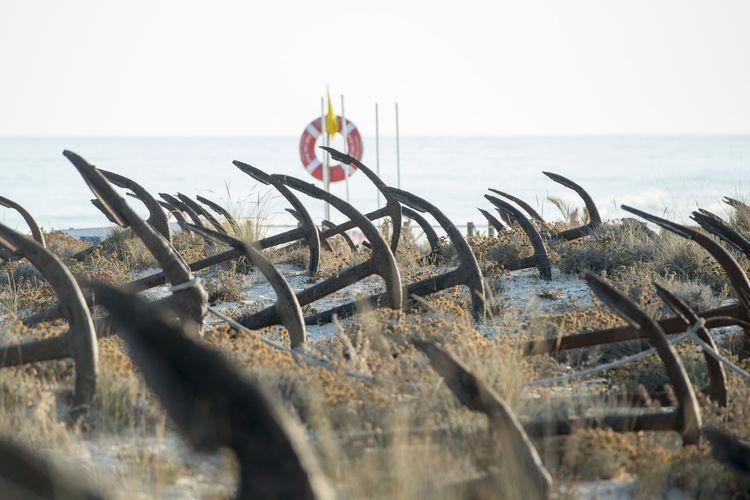 Rusty anchors at beach against clear sky