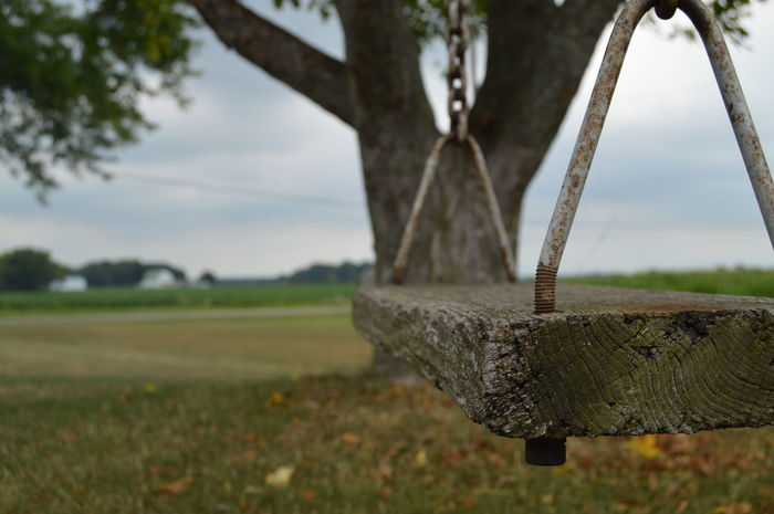 Country Life Country Living Countryside Pear Tree  Swing Wooden Swing Childhood Childhood Memories Tree Swing Close-up Home Is Where The Art Is Place Of Heart