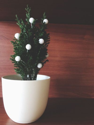 Table Indoors  Wood - Material No People Close-up Flower Freshness Day Christmas Decoration decorations] Preparation