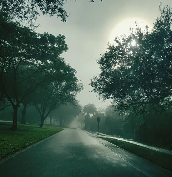 Coral Gables, Florida. Taking Photos Capturing The Moment Check This Out Sky & Clouds Foggy Morning Taking Random Pictures For Fun😉😜 Nature's Art Discover Your City Findings In Nature