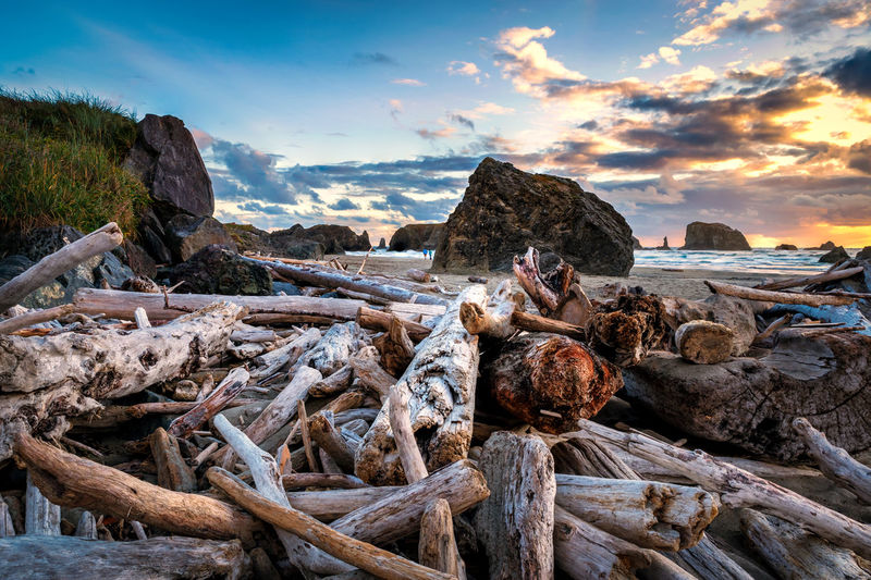Lots of driftwood at the Oregon Coast Coastline Beach Beachphotography Beauty In Nature Cloud - Sky Coast Driftwood Land Nature No People Oregon Coast Outdoors Rock Rock - Object Scenics - Nature Sea Seascape Sky Solid Stack Sunset Tranquil Scene Tranquility Water Wood - Material