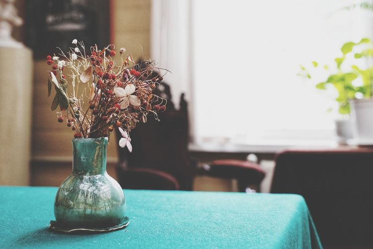 Close-up of flower pot on table at home