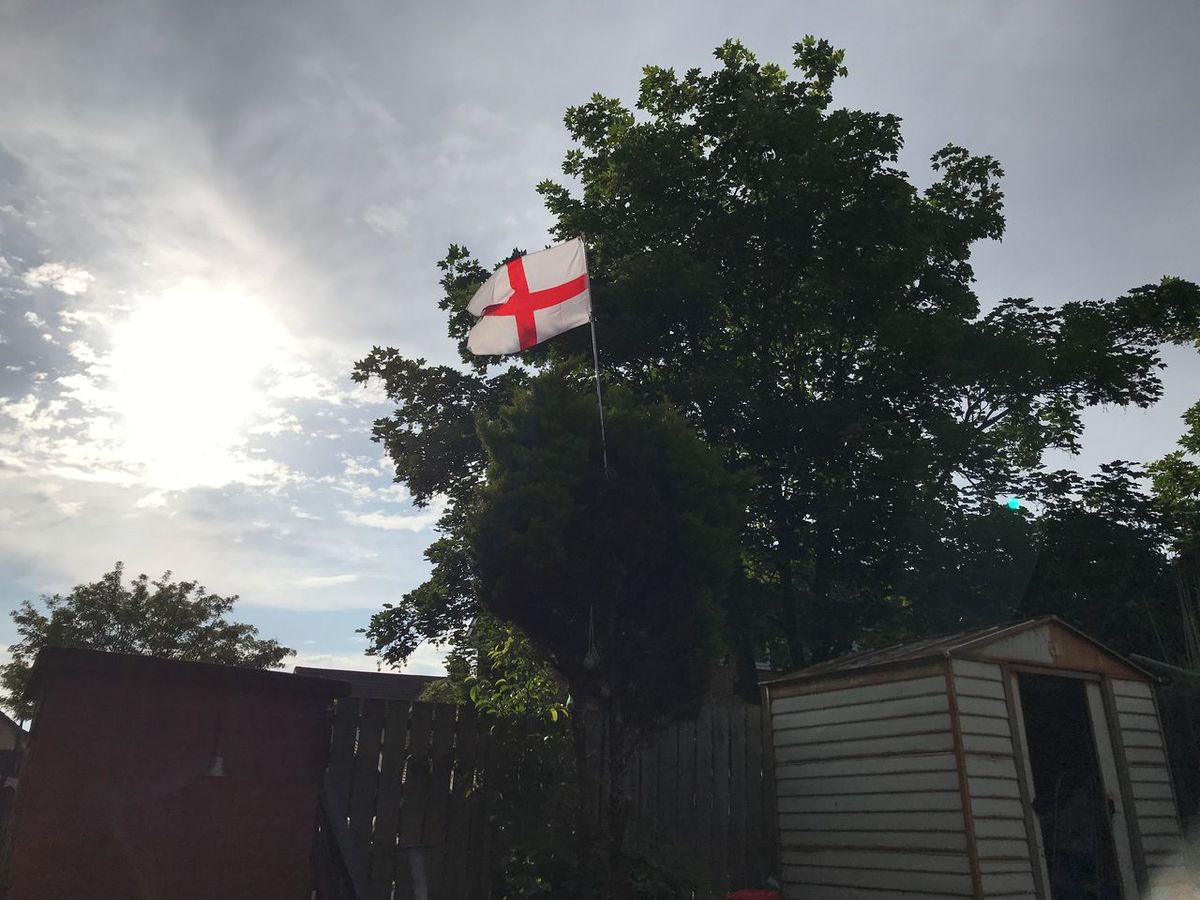 Flying the flag, for the 3 Lions🏴 Tree Plant Sky Low Angle View Flag Nature Patriotism Built Structure Architecture Cloud - Sky Growth Sunlight No People Building Building Exterior Decoration Outdoors Day