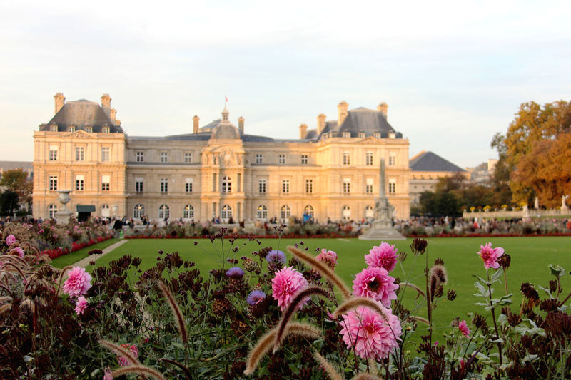 Architecture Beauty In Nature Building Exterior Built Structure Castle Castles City Day Flower Flower Head Fragility Freshness Government Jardin Du Luxembourg Nature No People Outdoors Paris Paris ❤ Paris, France  Purple Schloss Sky Travel Travel Destinations Neighborhood Map
