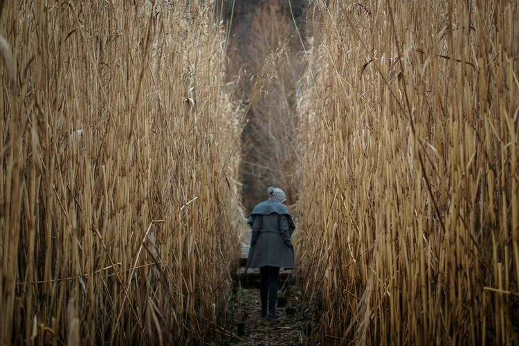 Woman standing in a forest of reed