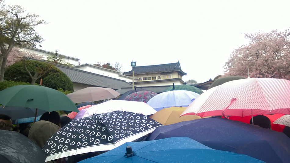 a lot of umbrellas Clear Sky Day Large Group Of People Nature Outdoors People Rainy Day Real People Shelter Sky Tree Umbrellas Winter