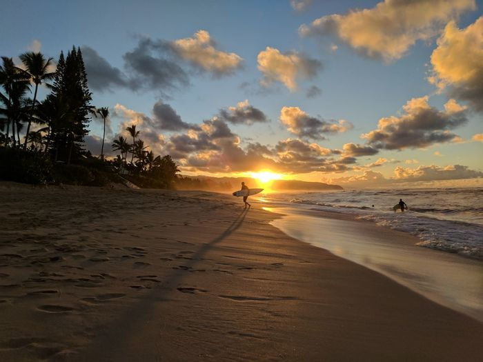 Surfers in sunset on North Shore. Hawaii Sunset Hawaiian Sunset Hawaiian Beauty Oahu, Hawaii Oahu Beaches Oahu Sunset Water Wave Tree Sea Full Length Sunset Beach Low Tide Coast Surf Dramatic Sky Surfboard Ocean Romantic Sky