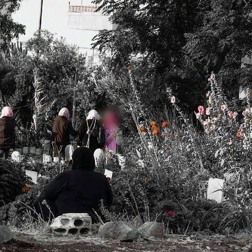 بقرب الجنة .. عيد_الفطر . صباح_العيد . حمص رياض_الجنة . مقبرة_الشهداء . سوريا Syria Homs