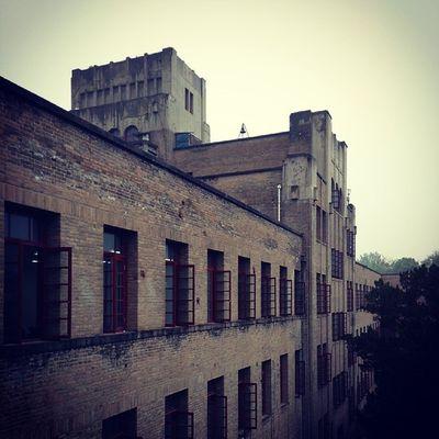 北校三号楼,国家文物,欧式建筑,太帅了。。摄于编译原理考试后~