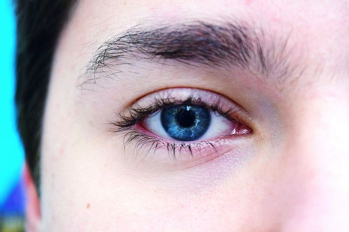 Human Eye Eyelash Eye Beauty Human Skin Iris - Eye BlueEyes Beautiful ♥ Boyeye My Photography