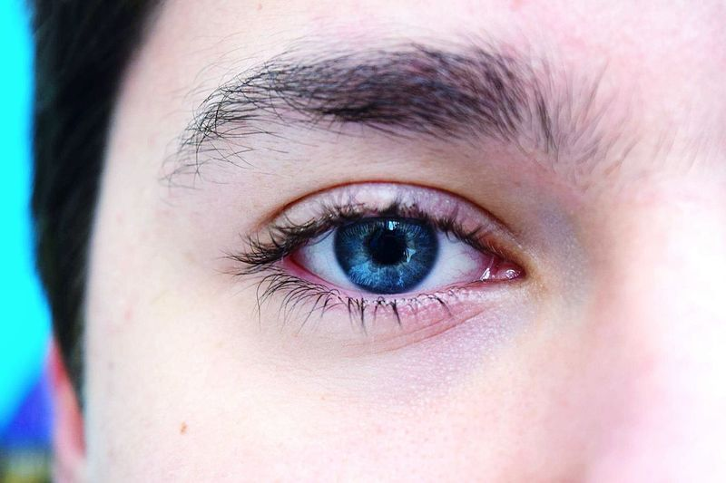 Human Eye Eyelash Eye Beauty Human Skin Iris - Eye BlueEyes Beautiful ♥ Boyeye My Photography