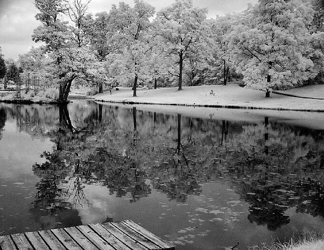 Hunington, Indiana, City Park, Infrared Landscape Black & White Photography Shades Of Grey Painting With A Camera EyeEm Best Shots Creative Light And Shadow First Eyem Photo Enjoying Life Infrared