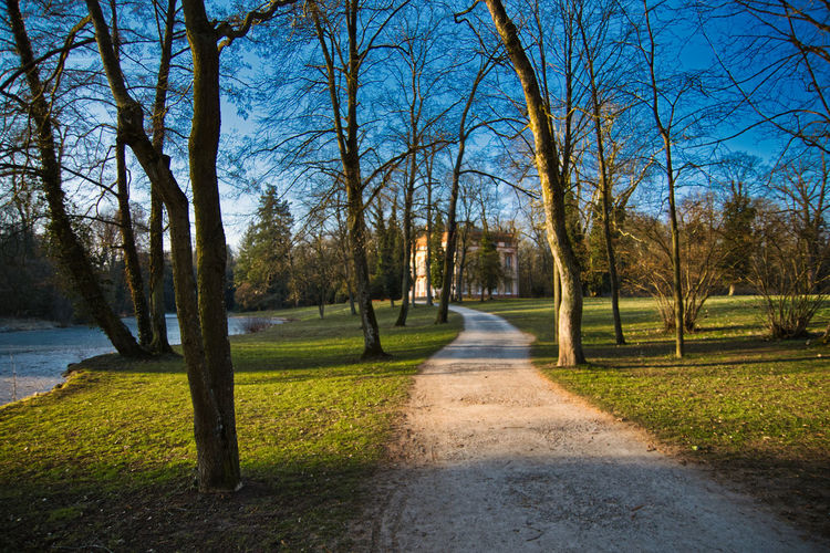 Footpath amidst bare trees in park