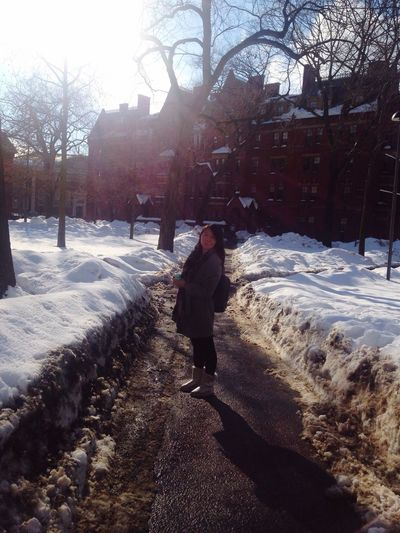 Shine in Harvard. First Eyeem Photo