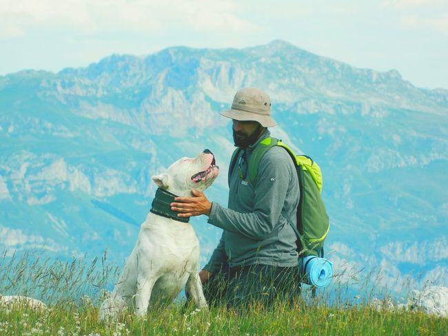 Love Hiking Hike Adventure Forest Top Natural Dogoftheday Truth EyeEmNewHere Dog Pets One Animal Domestic Animals Friendship Day Only Men Two People Outdoors Men Nature People