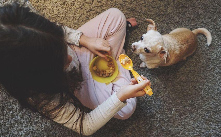 High Angle View Of Girl With Dog