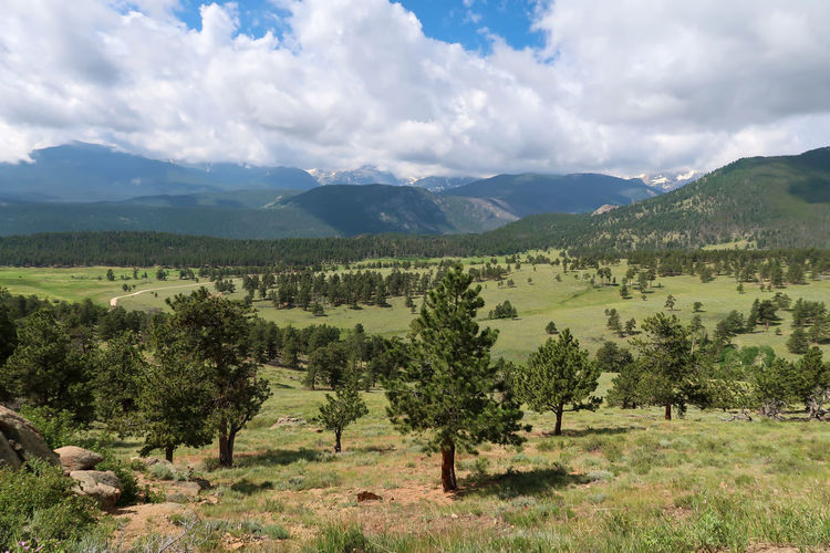 Landscape of meadow, trees clouds and mountains at rocky mountain national park in colorado