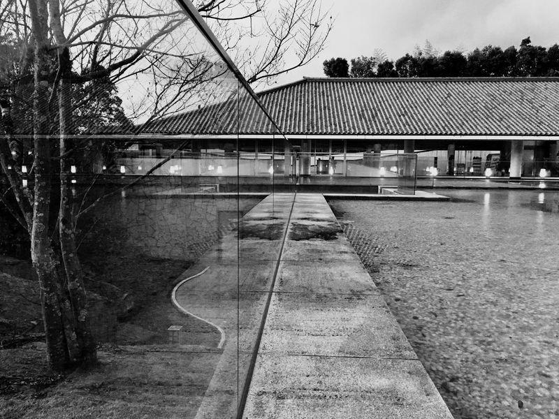 The Secret Spaces 2017 Eyeem Awards EyeEm Best Shots EyeEm Best Shots - Black + White Museum Modern Architecture Photography Pool Bare Tree Metabolism Nara