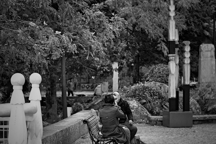 Adults Only Architecture ArtWork Bench Black & White Black And White Blackandwhite Built Structure Casual Clothing Communication Couple Embrace Urban Life Enjoy The New Normal Exceptional Photographs EyeEm Best Shots EyeEm Best Shots - Black + White EyeEmBestPics From My Point Of View Outdoors People Plants Real People Sitting Socializing Tree