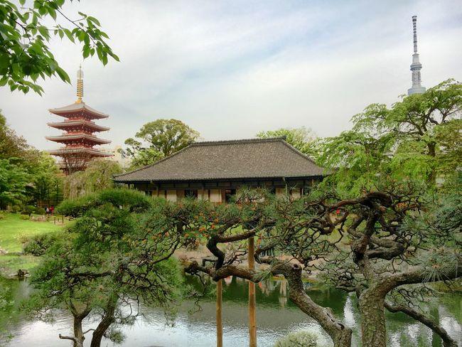 伝法院 Sensouji Temple Asakusa Tokyo Japan Iphon6s