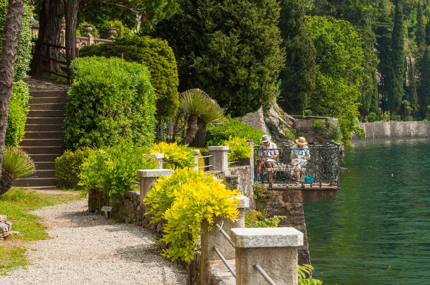 Tree Green Color Day Growth Outdoors Nature No People Beauty In Nature Water Elderly Couple Man Woman Artist Painting Lake Lecco Como Varenna Garden Summer Art Artists Love Calm Be. Ready. EyeEmNewHere