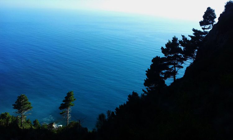 #EyeEmEsterlinda #italy Beauty In Nature Blue Cliff Coast Horizon Over Water Rock Formation Scenics Sea Seascape Silhouette Tree Water