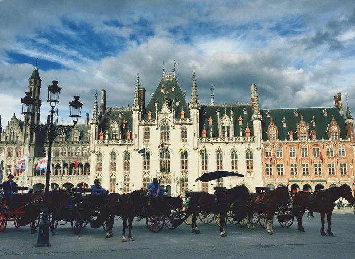 Provinciaal Hof Traveling Iamonmywaytoeverywhere Brugge Bruges Belgium Horses