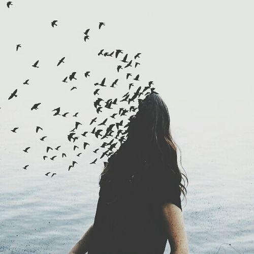 Birds Woman Brain